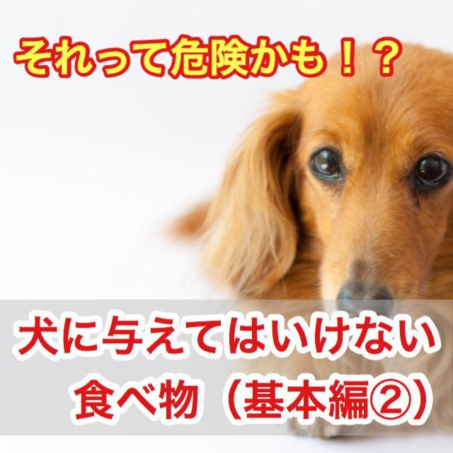 犬に与えてはいけない・食べてはいけない食べ物!その食べ物危険かも?(基本編②)