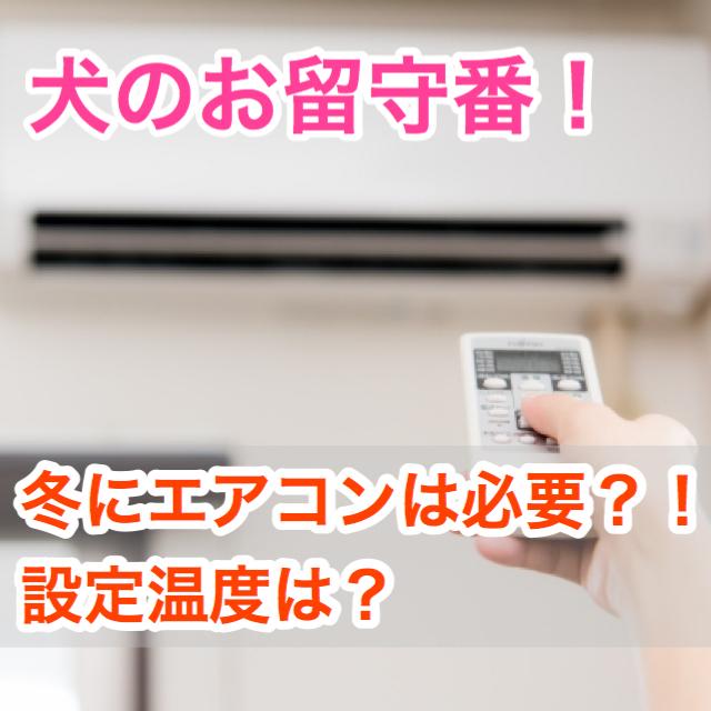 【寒い冬を乗り切ろう!】犬のお留守番中エアコンや暖房は必要?設定温度は?!