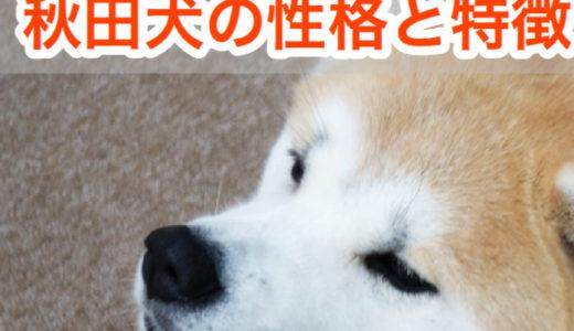 【ザギトワも夢中!?】秋田犬の性格と特徴。忠犬ハチ公物語のモデルは秋田犬?!
