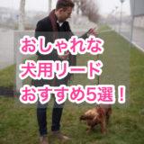 メンズライクでおしゃれな犬用リードおすすめ5選!丈夫で機能性も抜群。