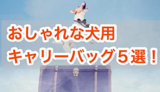 おしゃれで使いやすい!犬用キャリーバッグ5選【多頭用も!】